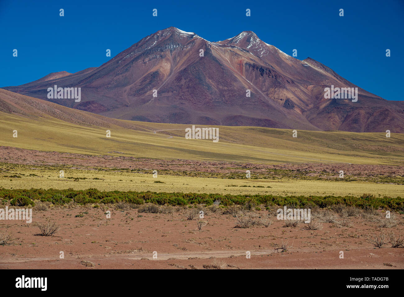 Miniques and Miscanti lagoons track in Atacama highlands - Stock Image