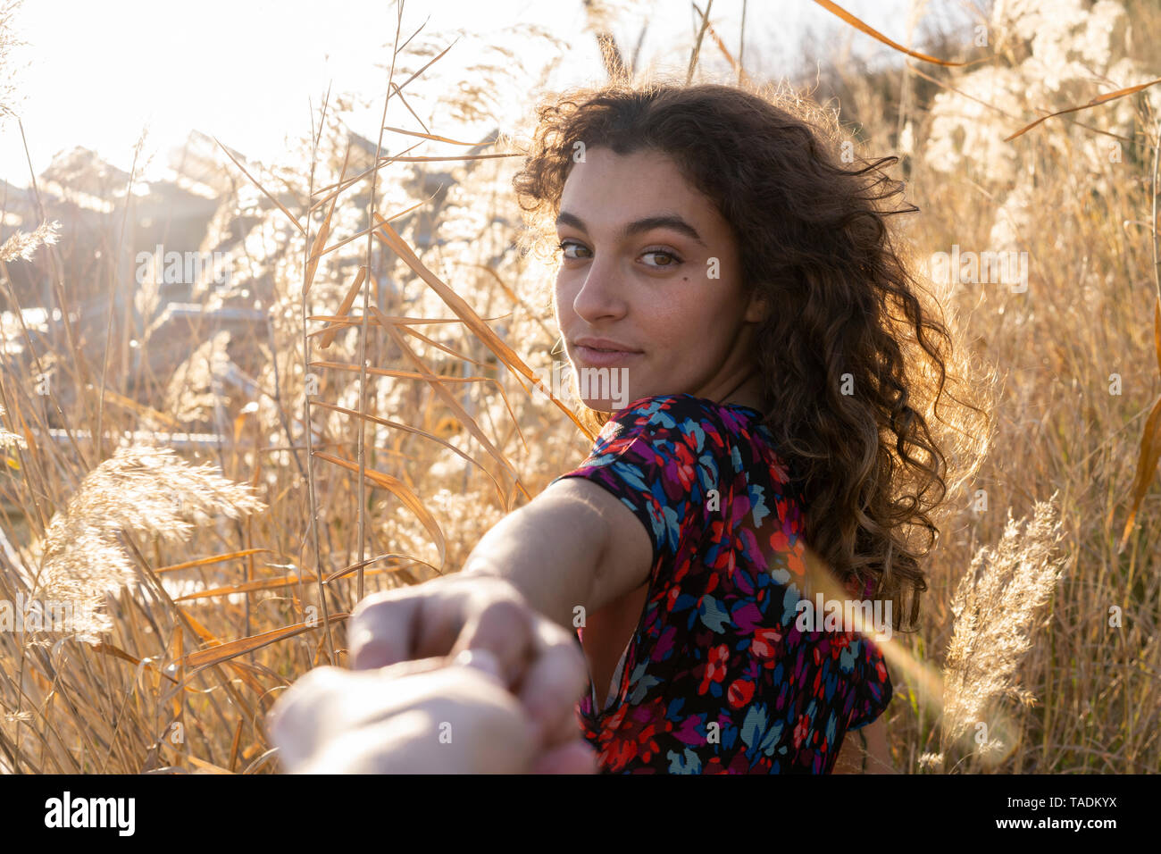 Young woman standing in meadow, holding hand of a young man Stock Photo