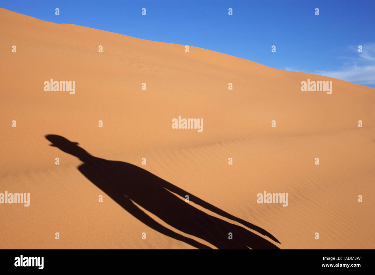 Morocco, Merzouga, Erg Chebbi, shadow of man wearing a bowler hat in desert dune - Stock Image