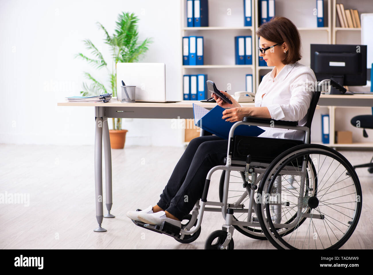 Female employee in wheel-chair at the office - Stock Image