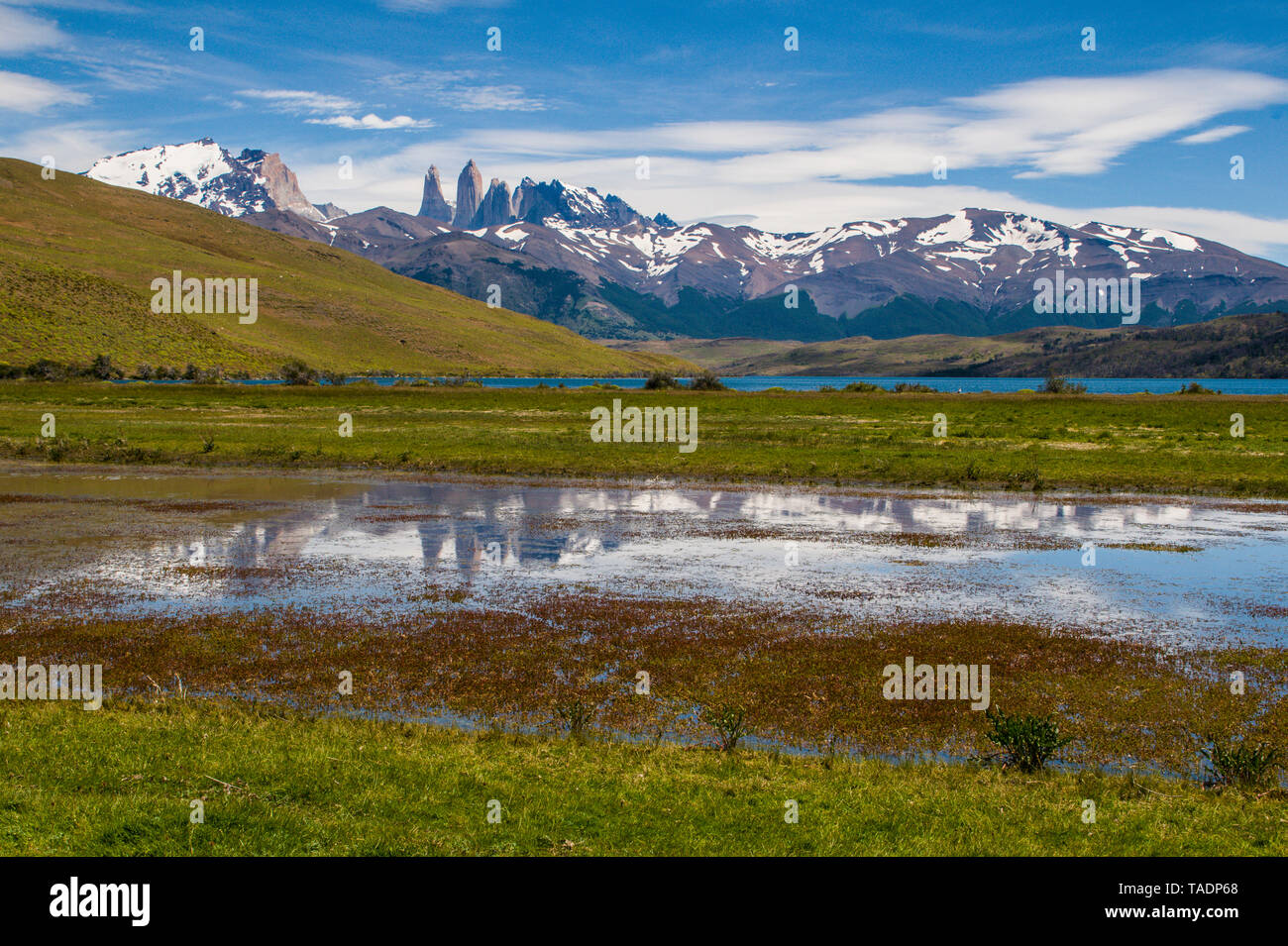 Chile, Patagonia, Torres del Paine National Park, scenic - Stock Image