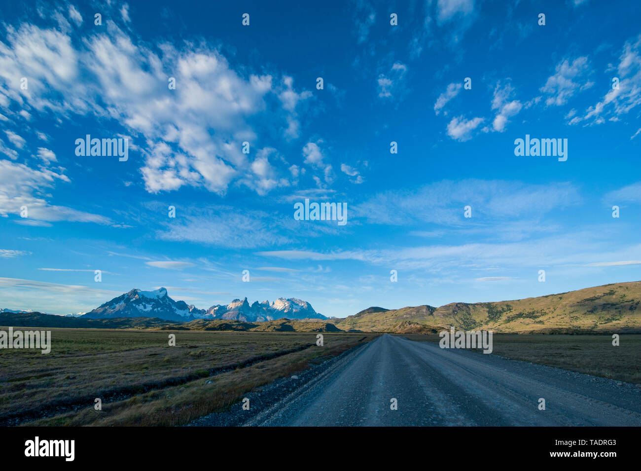 Chile, Patagonia, Straight road leading through the Torres del Paine National Park - Stock Image