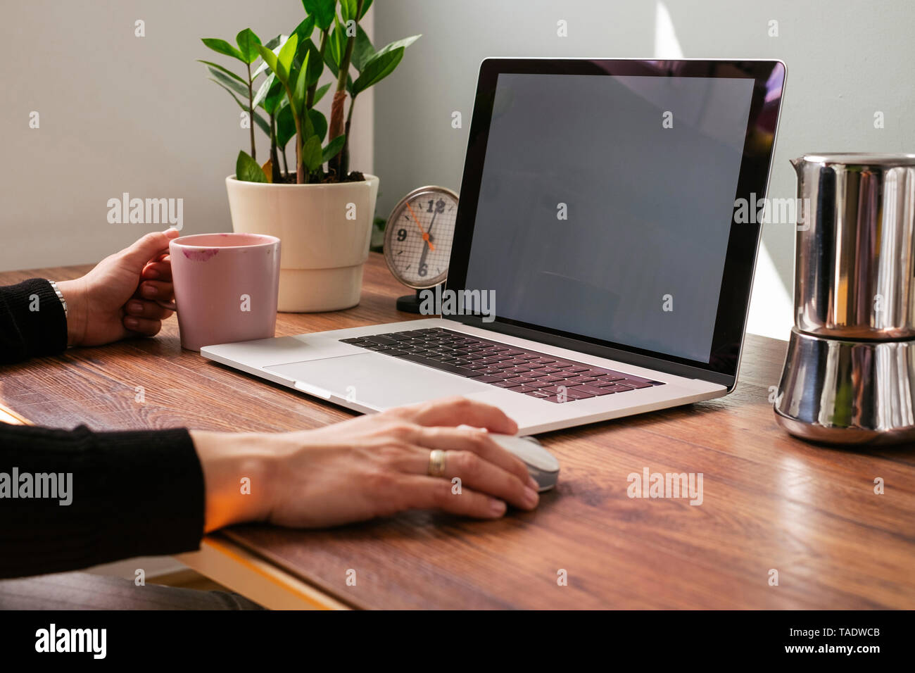 Woman working on laptop at home office, partial view - Stock Image