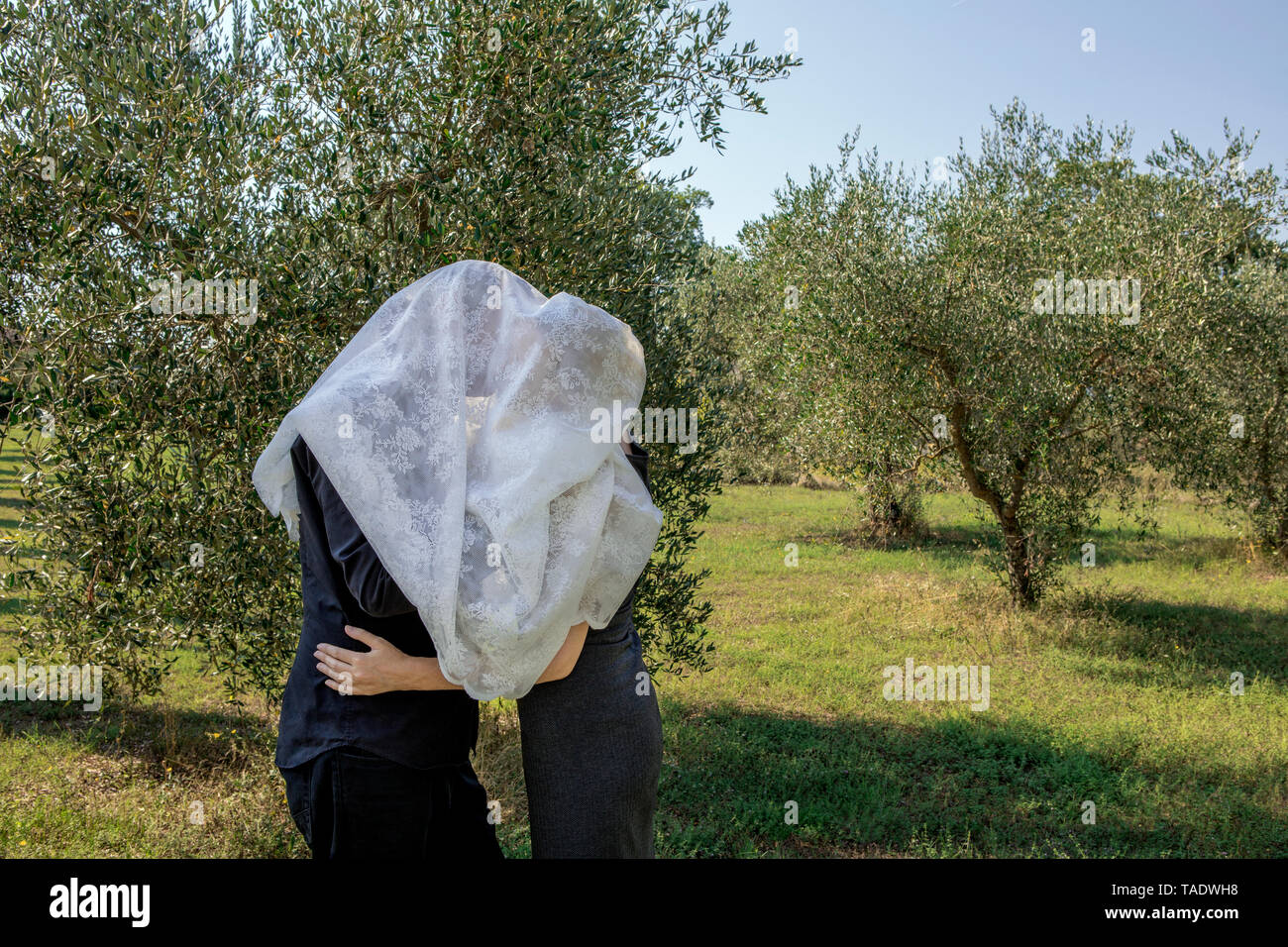 Italy, Tuscany, couple in olive grove kissing under a cloth - Stock Image