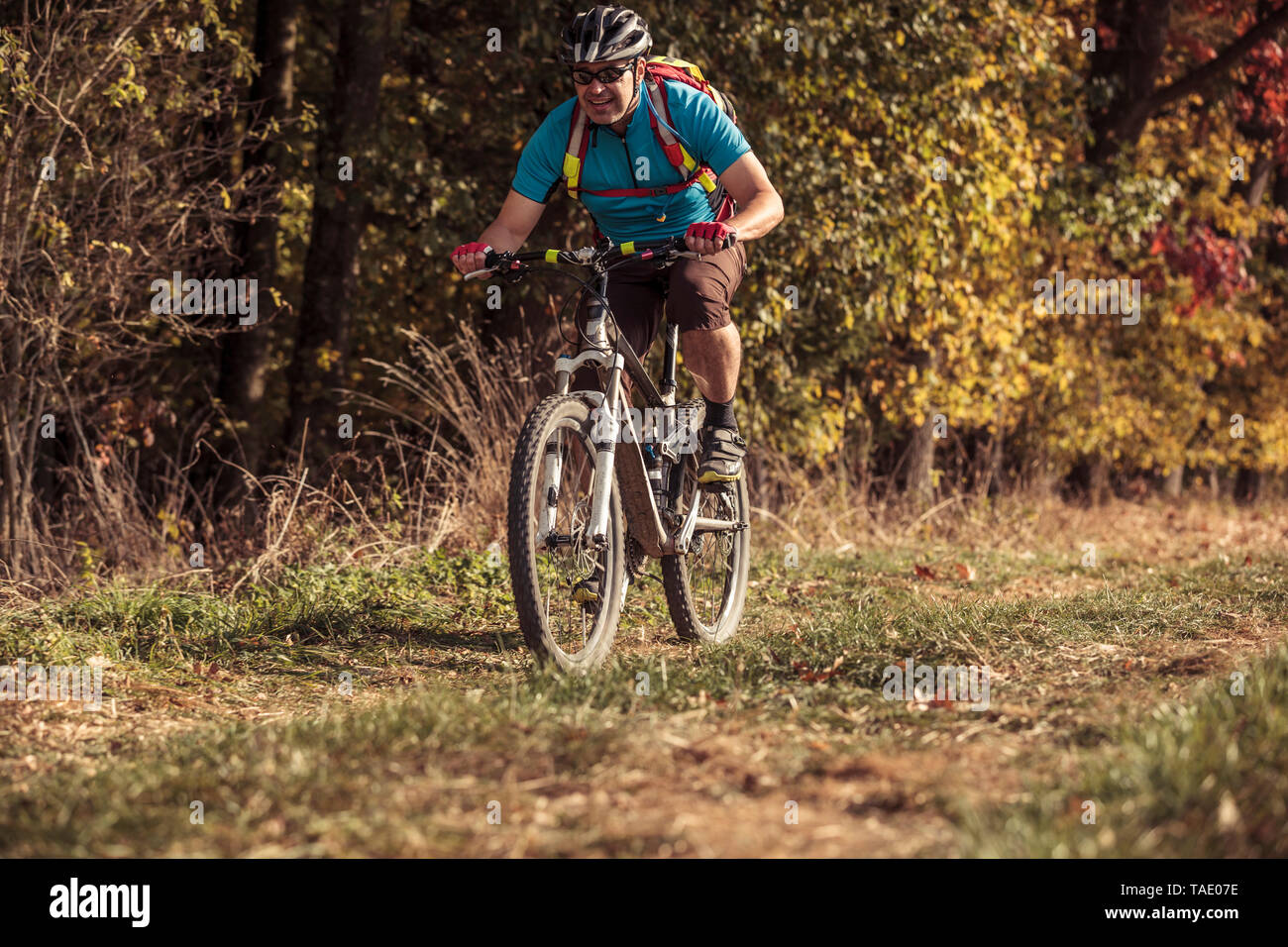 Man riding mountainbike on path by the forest - Stock Image