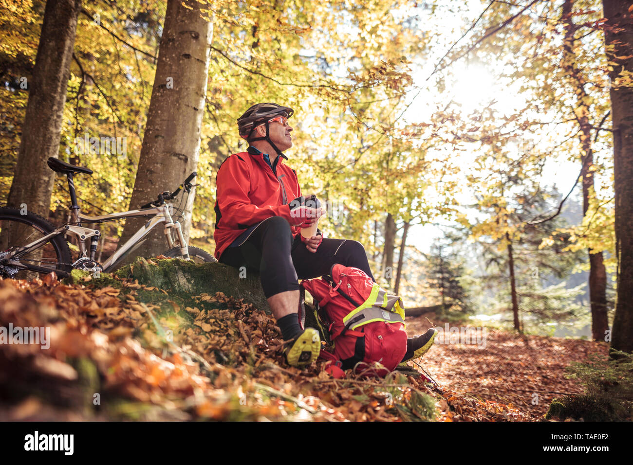 Man with mountainbike having a break in forest - Stock Image