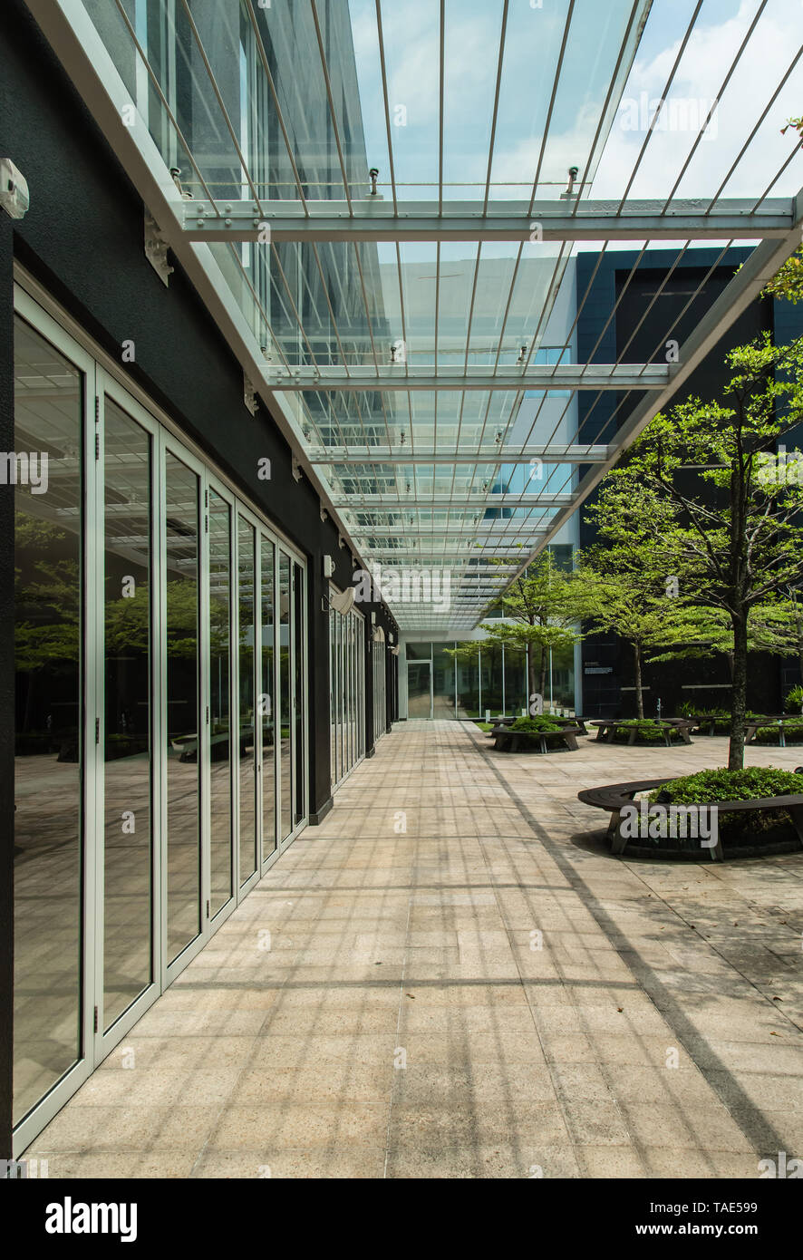 bright glass canopy street corridor Stock Photo: 247403221