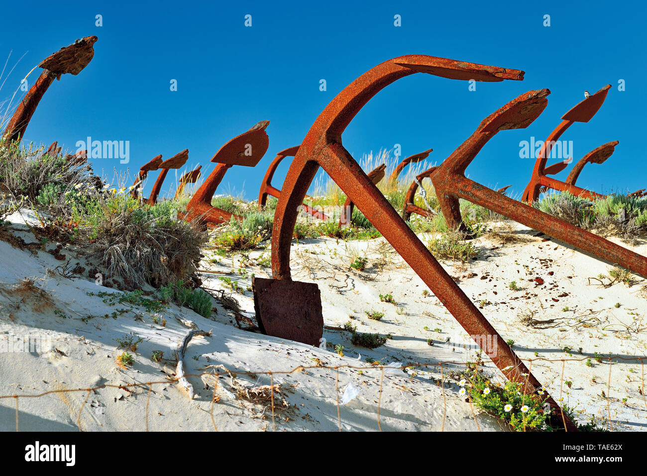 Dozens of anchors lying in sand dune contrasting with blue sky Stock Photo
