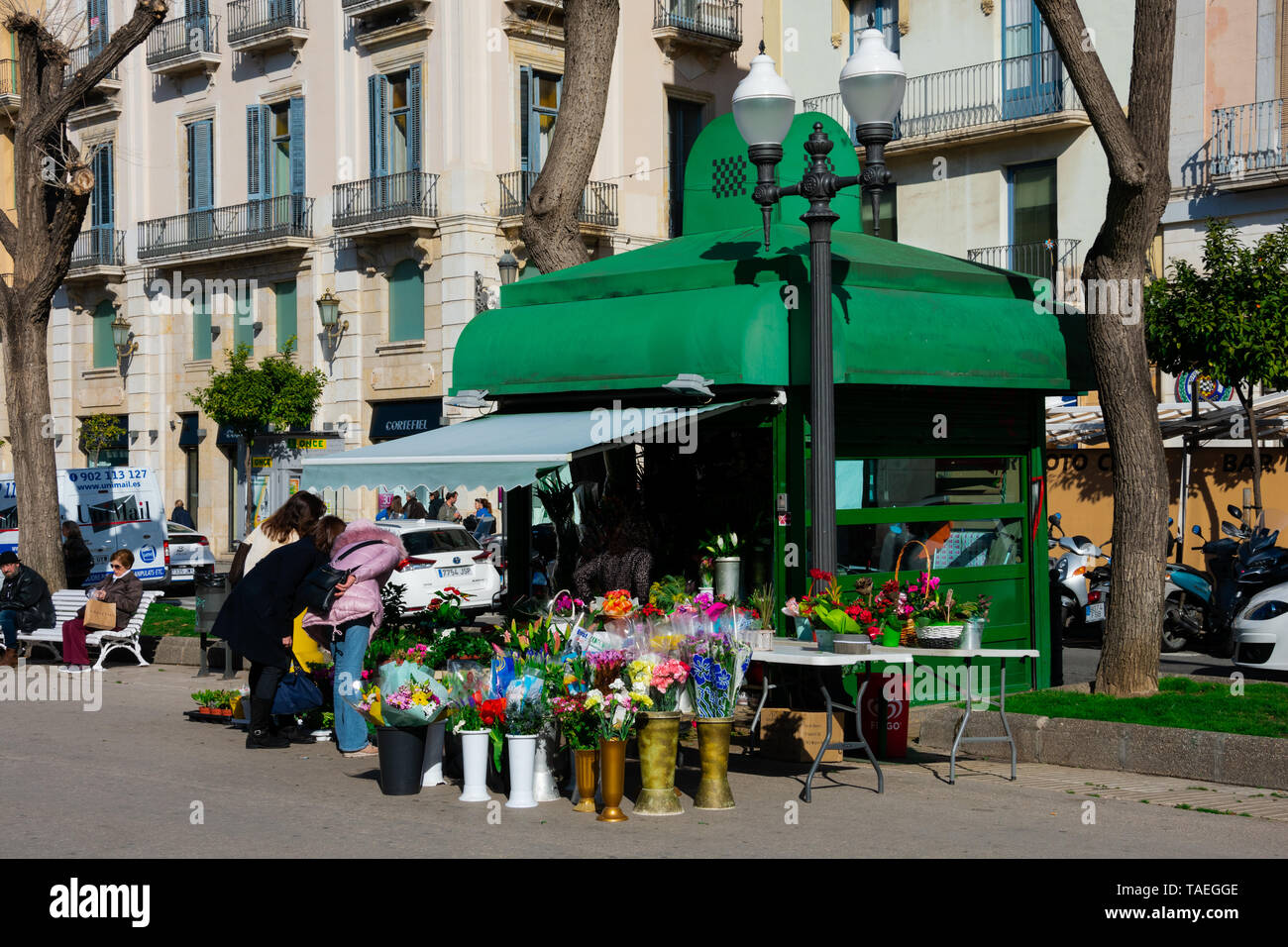 Tarragona, Spain. February 8, 2019. Flower Shop in Rambla Nova, a main city walk with restaurants and shops - Stock Image