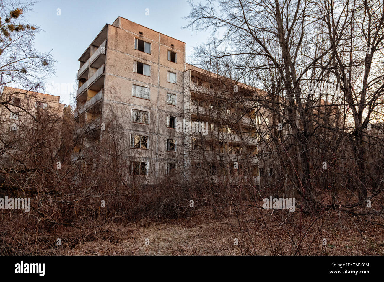In Pripyat, Ukraine, inside the Chernobyl Exclusion Zone Stock Photo