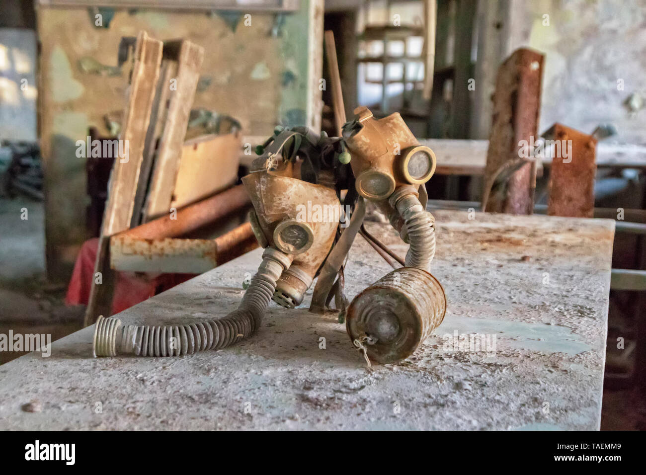 The Number 3 Middle School, Pripyat, Ukraine, inside the Chernobyl Exclusion Zone Stock Photo
