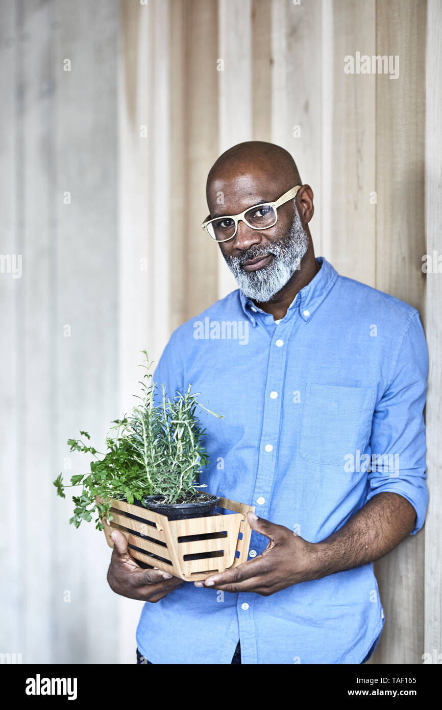 Portrait of confident mature businessman holding plants in office - Stock Image