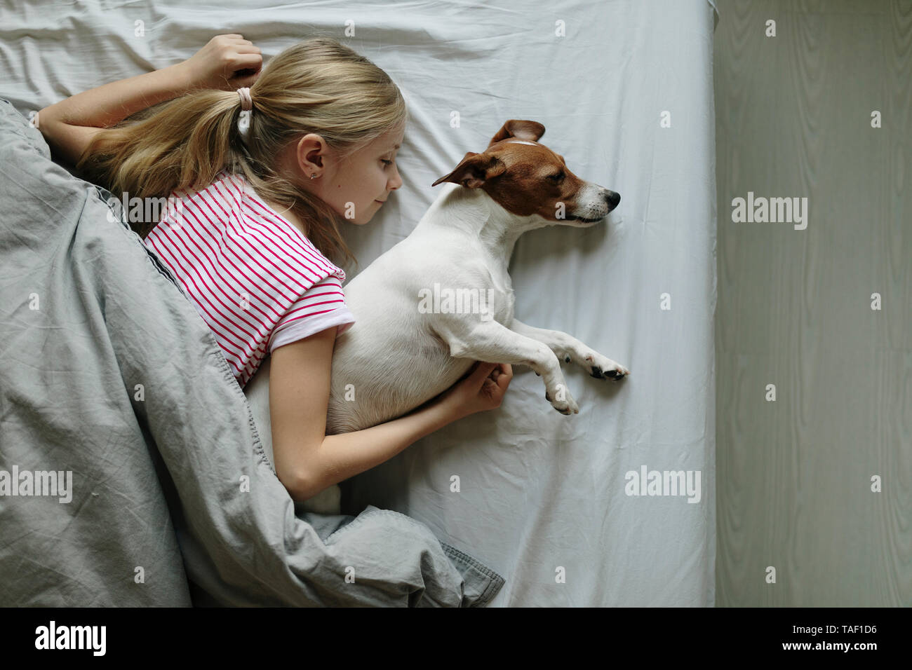 Blond girl lying on bed with her dog sleeping, top view - Stock Image