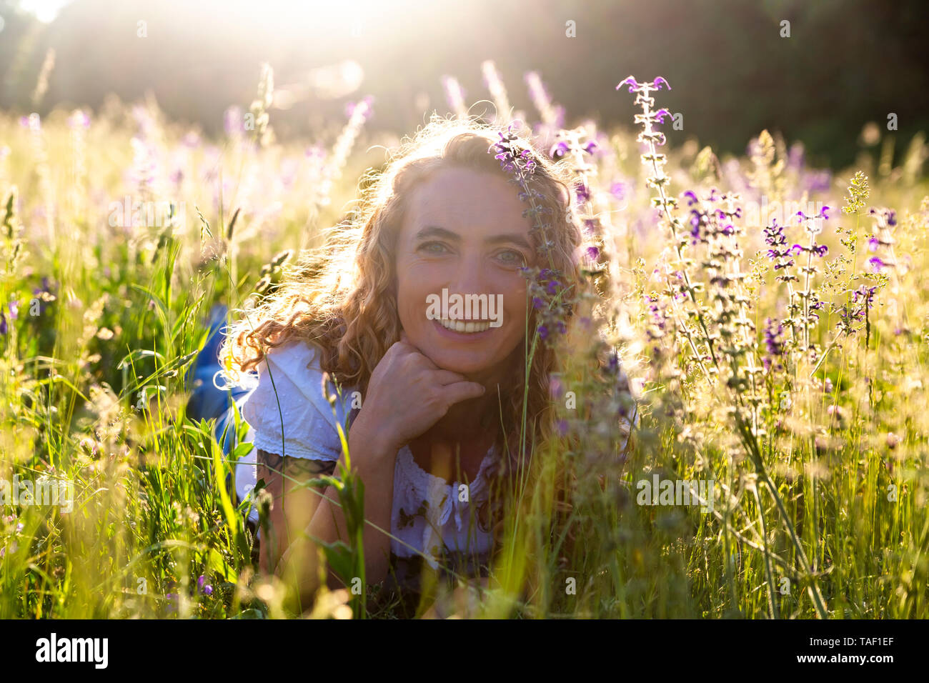 Portrait of happy woman lying on flower meadow at evening twilight - Stock Image