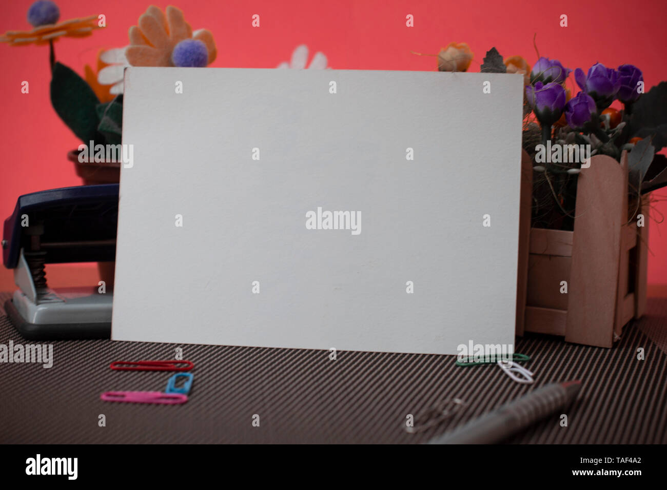 Flowers and writing equipments plus plain sheet above textured backdrop - Stock Image