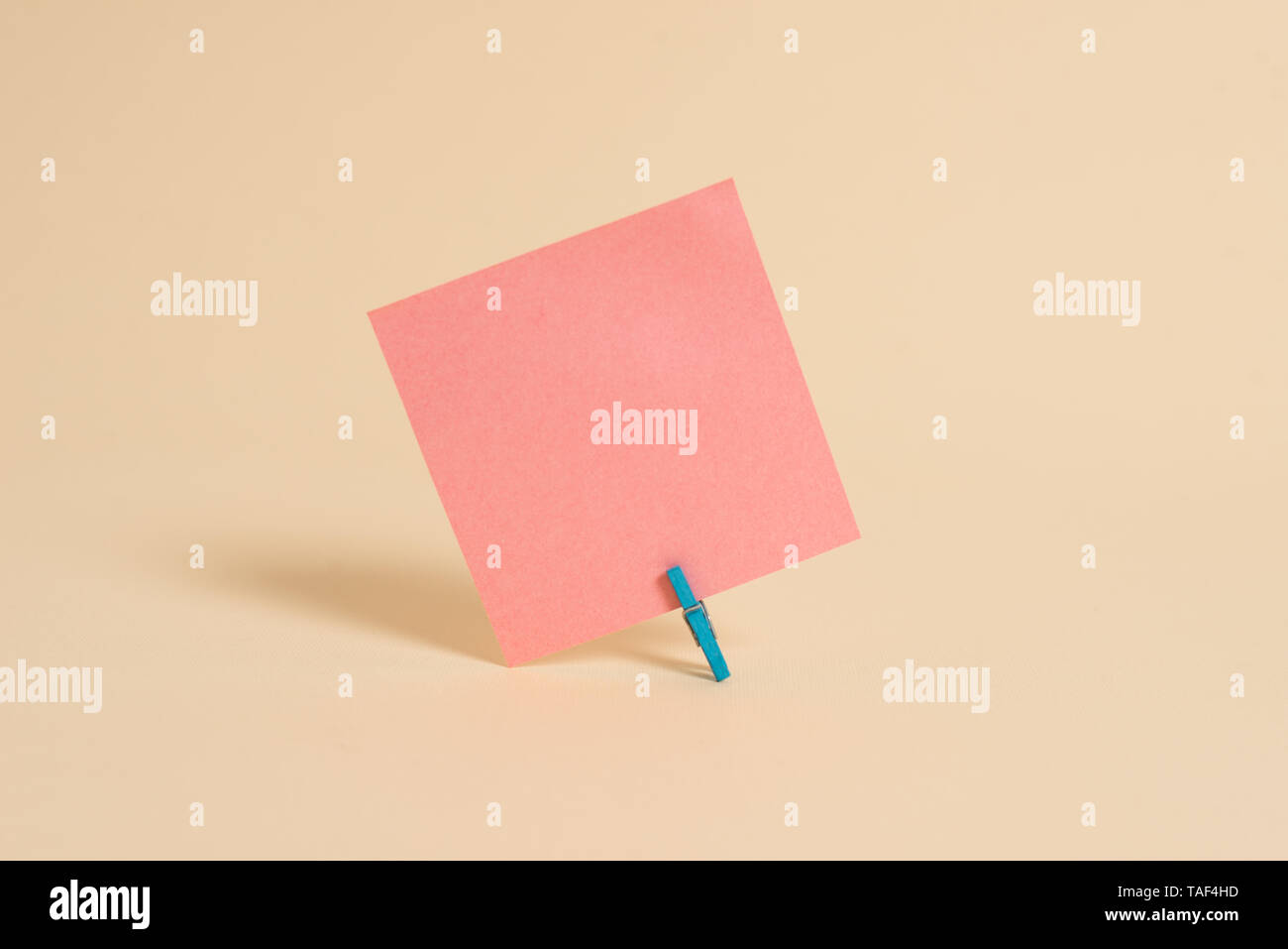 Plain note paper and stationary placed above soft pastel colour backdrop - Stock Image