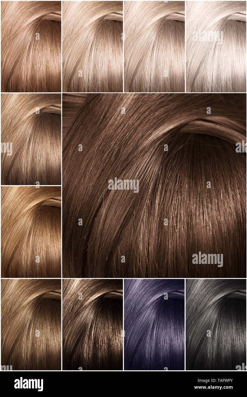 Shades Of Brown Color Samples High Resolution Stock Photography And Images Alamy,Shopping Mall Barbra Streisand House