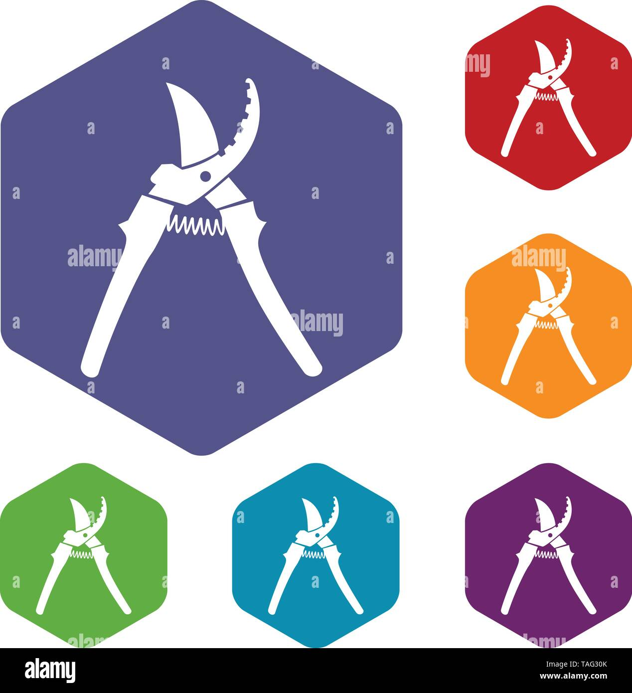 pruner icons vector hexahedron - Stock Image