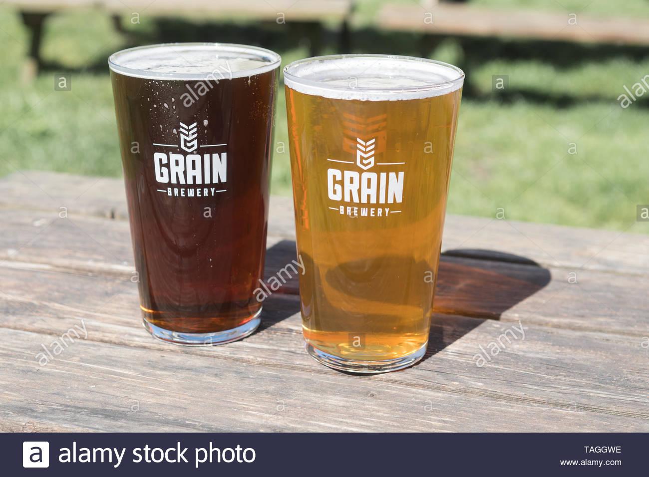 Grain Brewery beer in the beer garden at The Locks, Geldeston, Norfolk, England - a Grain Brewery public house - Stock Image