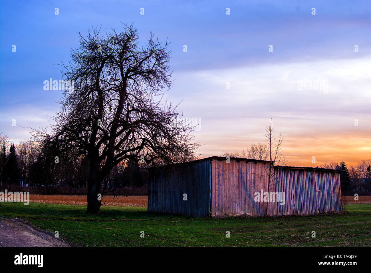 The wooden barn - Stock Image