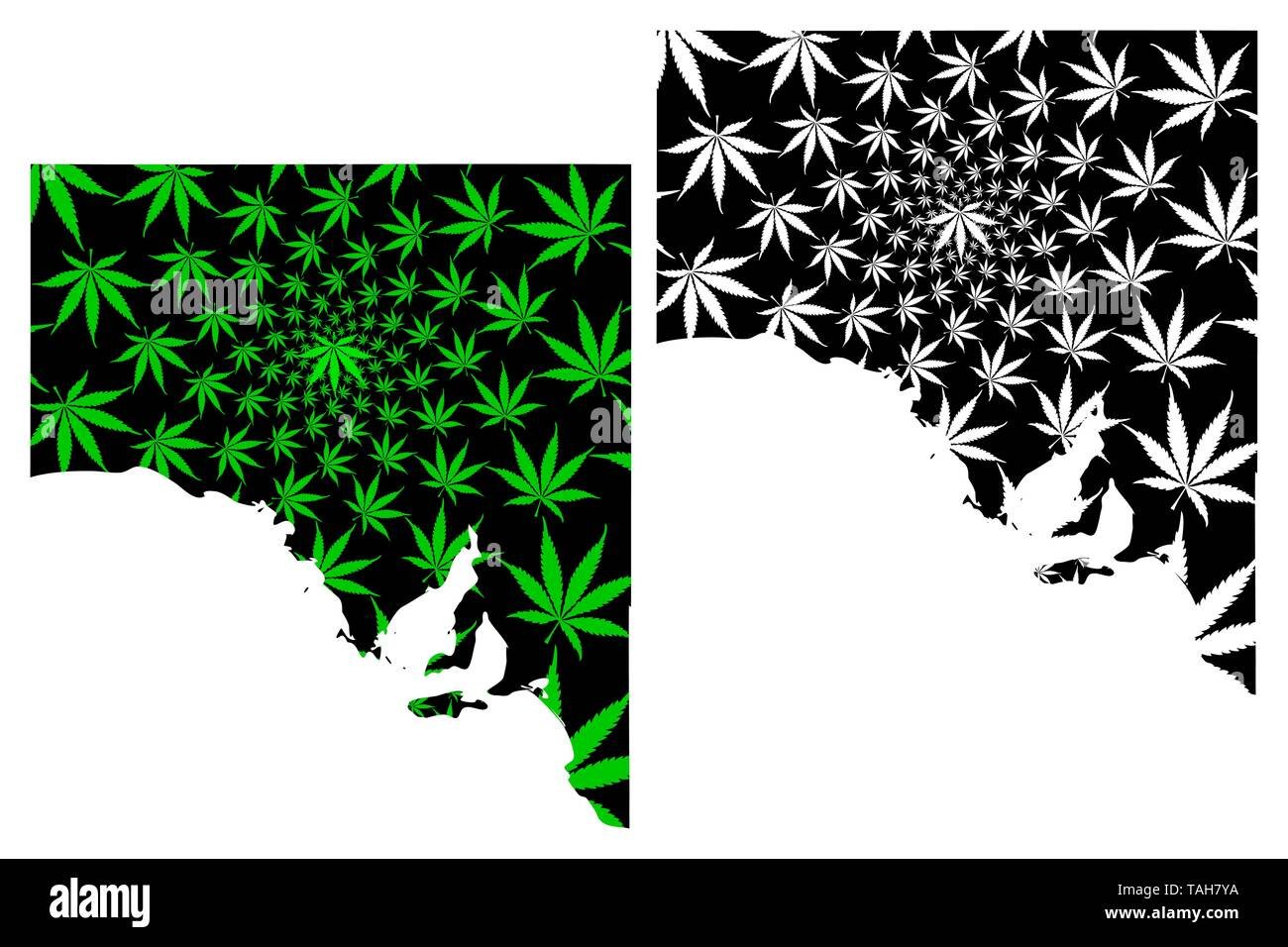 South Australia (Australian states and territories, SA) map is designed cannabis leaf green and black, South Australia map made of marijuana (marihuan - Stock Vector