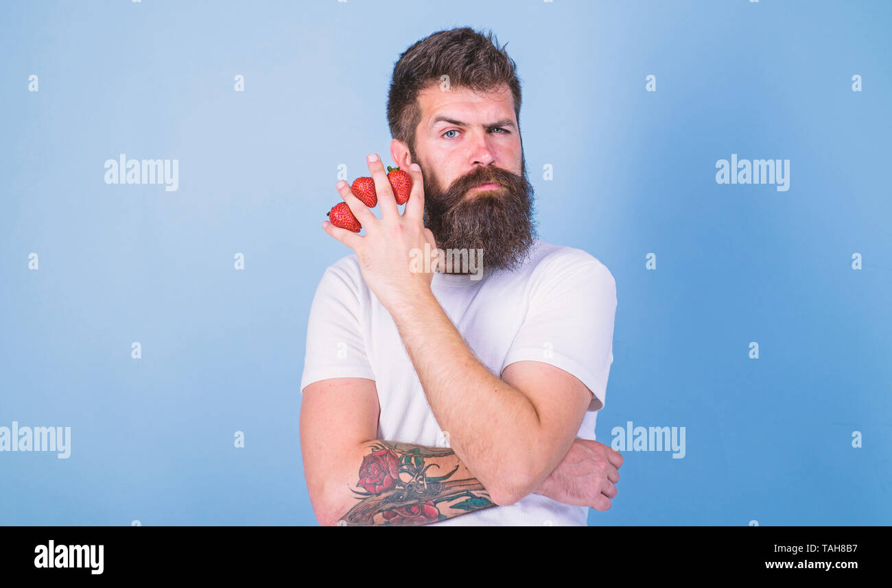 Carbohydrate content strawberry. Metabolic disease. Strawberries safest fruit for sugar levels. Mostly carbohydrates sucrose fructose glucose. Man beard hipster strawberries fingers blue background. - Stock Image