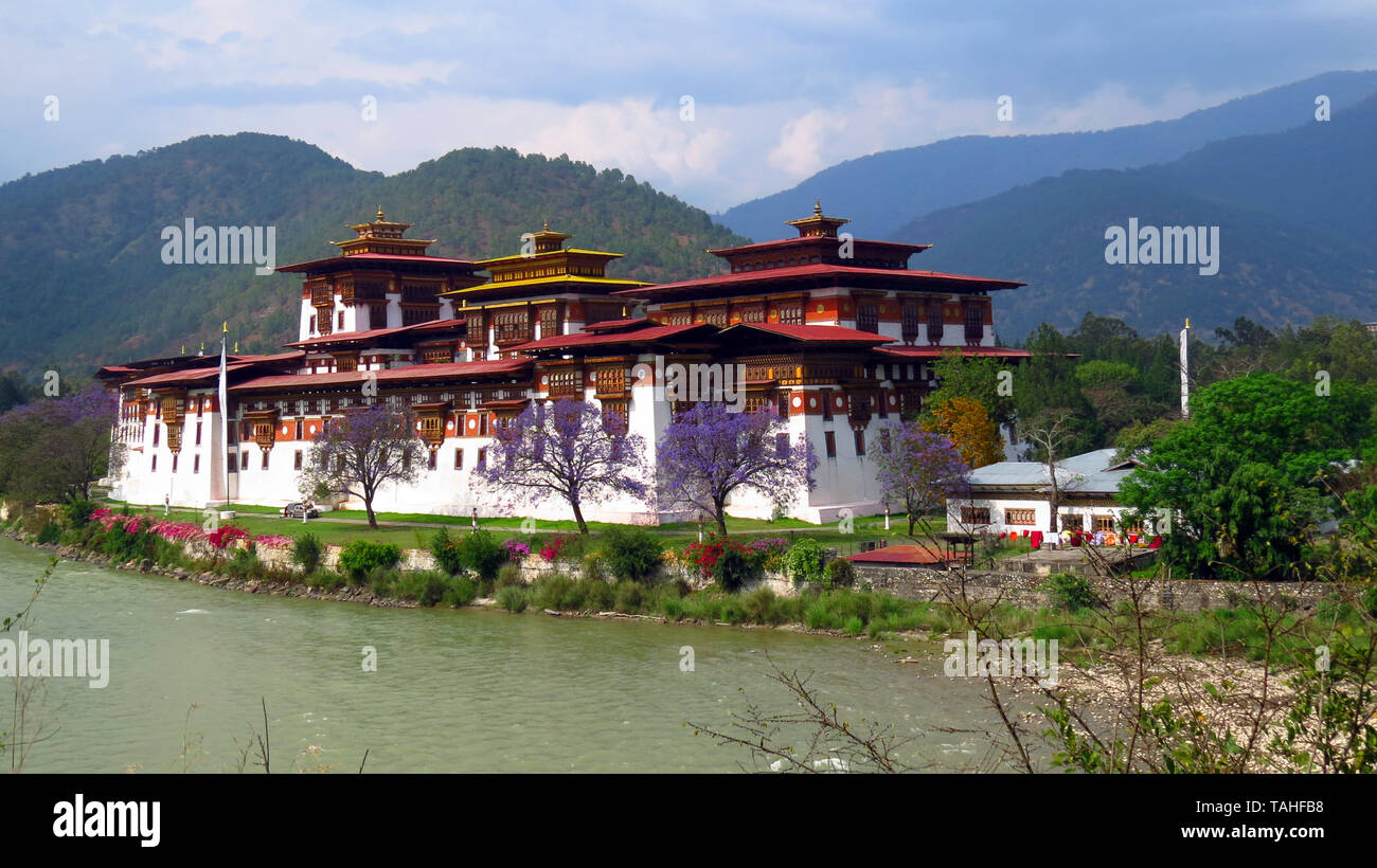 The Punakha Dzong also known as Pungtang Dewa chhenbi Phodrang meaning the palace of great happiness or bliss, in Bhutan. - Stock Image
