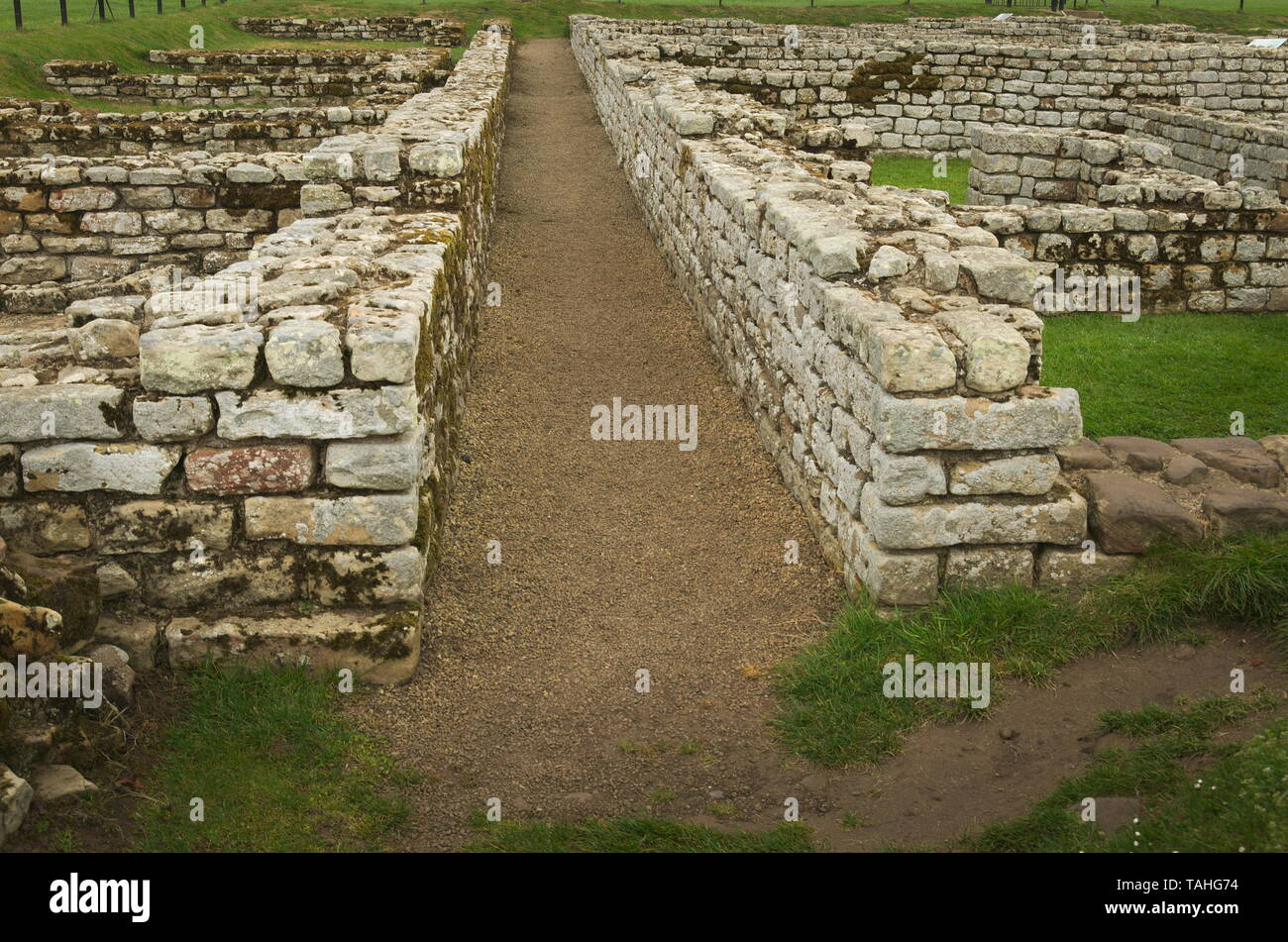 Foundation of the Chesters roman site, National trust - Stock Image