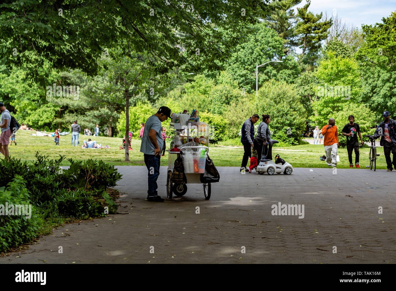 Hispanic man is selling an ice cream and other snacks in the park - Stock Image
