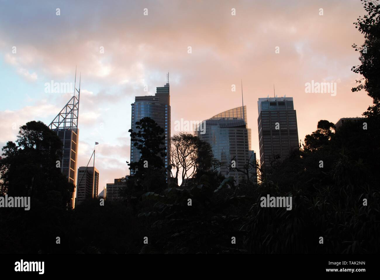 Sydney sunset in central park looks like a romantic painting – what a skyline - Stock Image