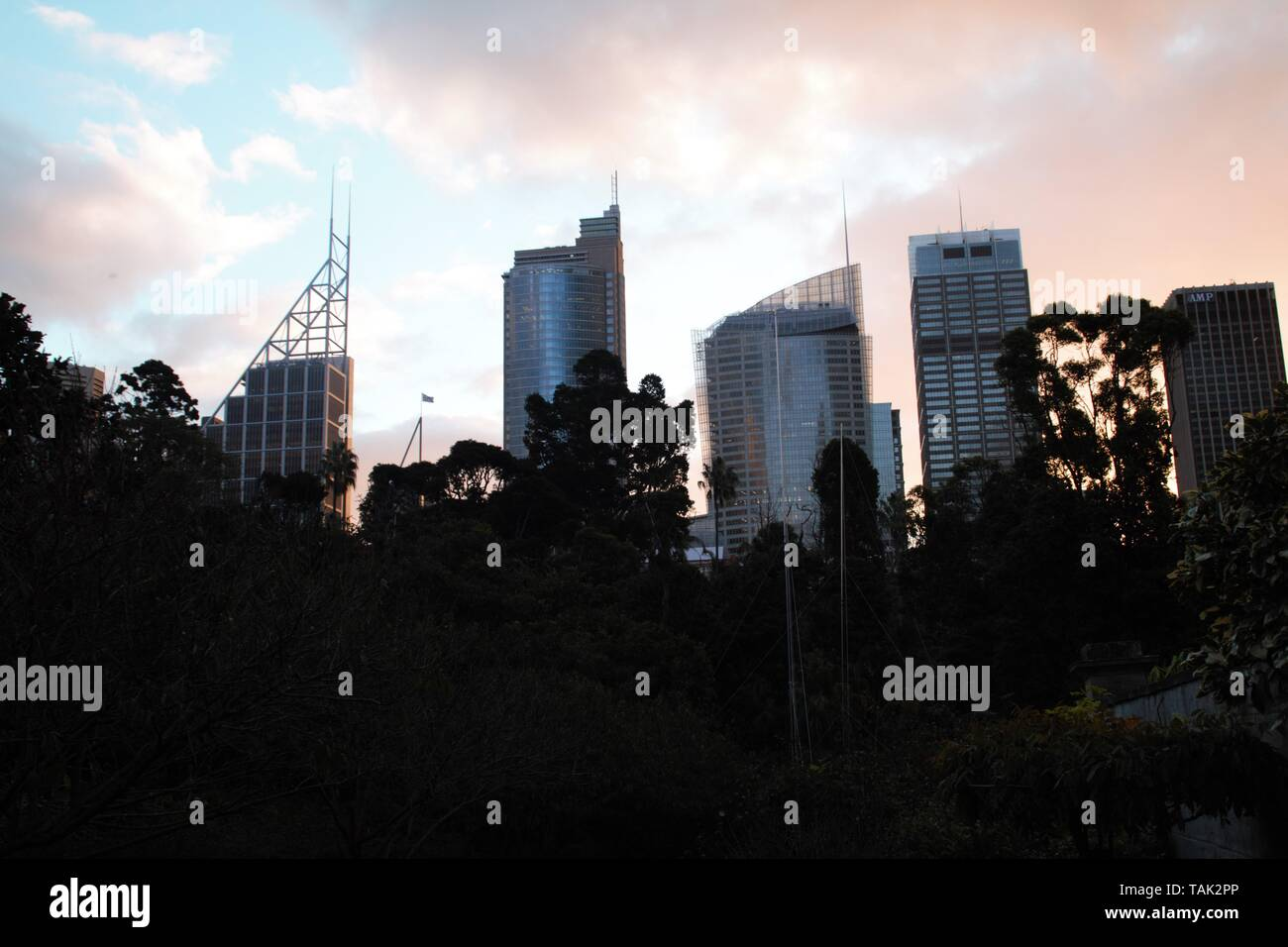 Sydney sunset in central park with a nice view of the downtown skyline - Stock Image