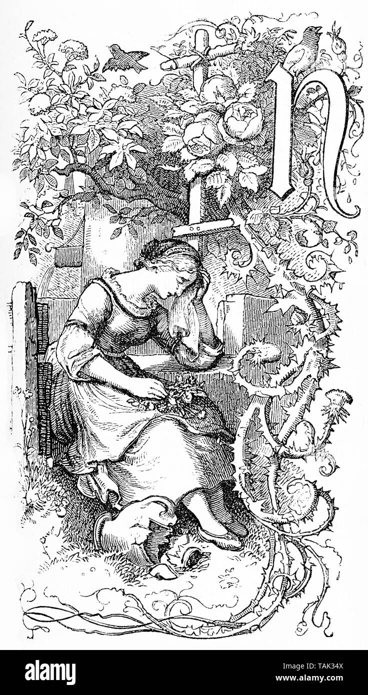 Capital letter N as chapter frontispiece decorated with a sad girl crying and a flourish of spiny leaves and flowers Stock Photo