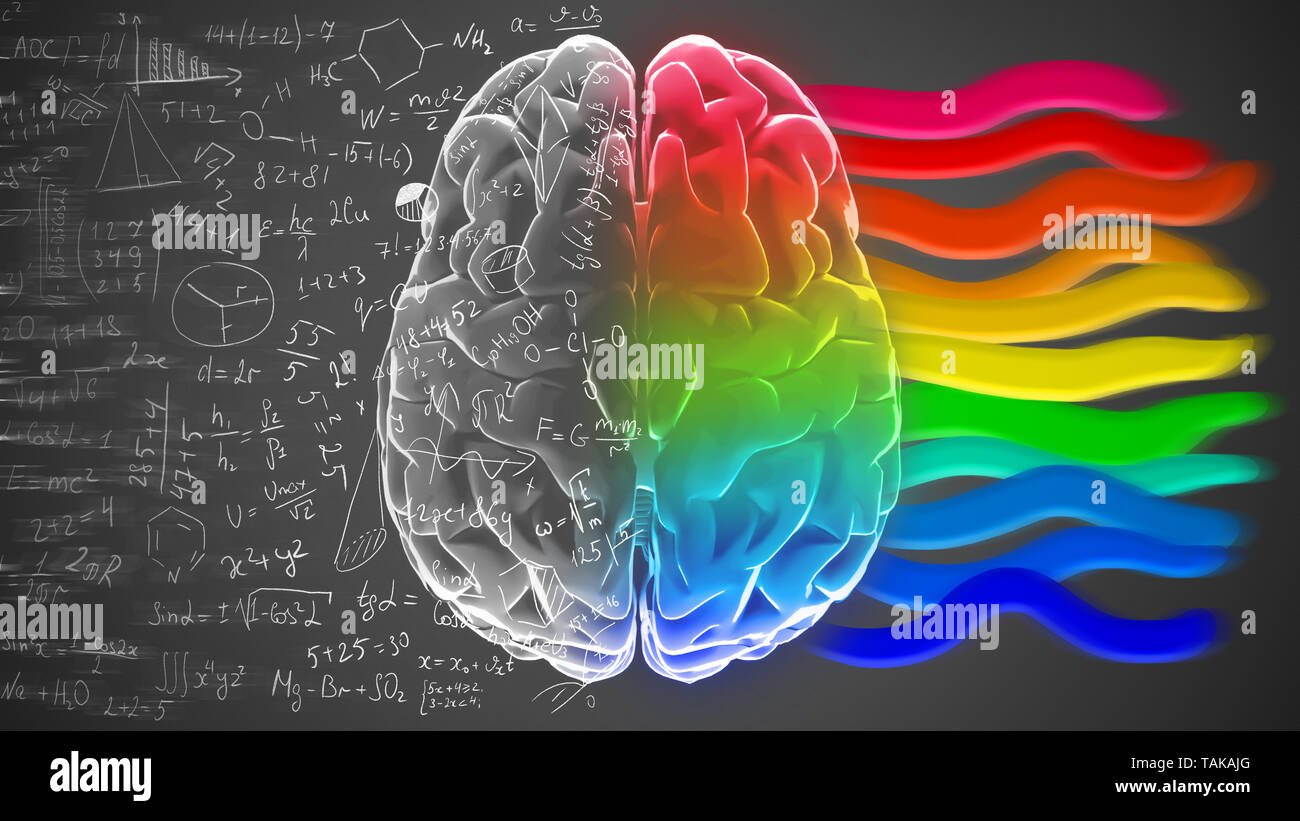 Creative and logical halves of human mind. - Stock Image