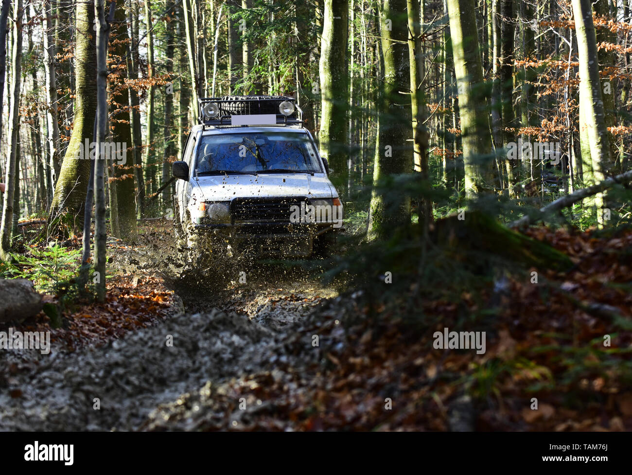 Rallying, competition and four wheel drive concept. Sport utility vehicle or SUV overcomes obstacles. Motor racing in autumn forest Offroad race on - Stock Image