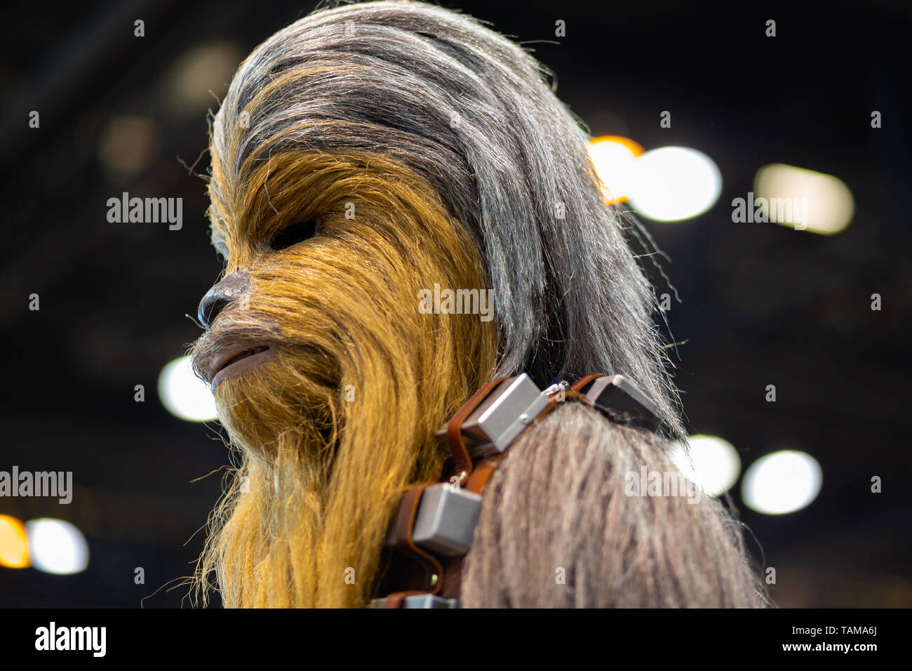 Chewbacca cosplay at Star Wars Celebration 2019 - Chicago, IL - Stock Image