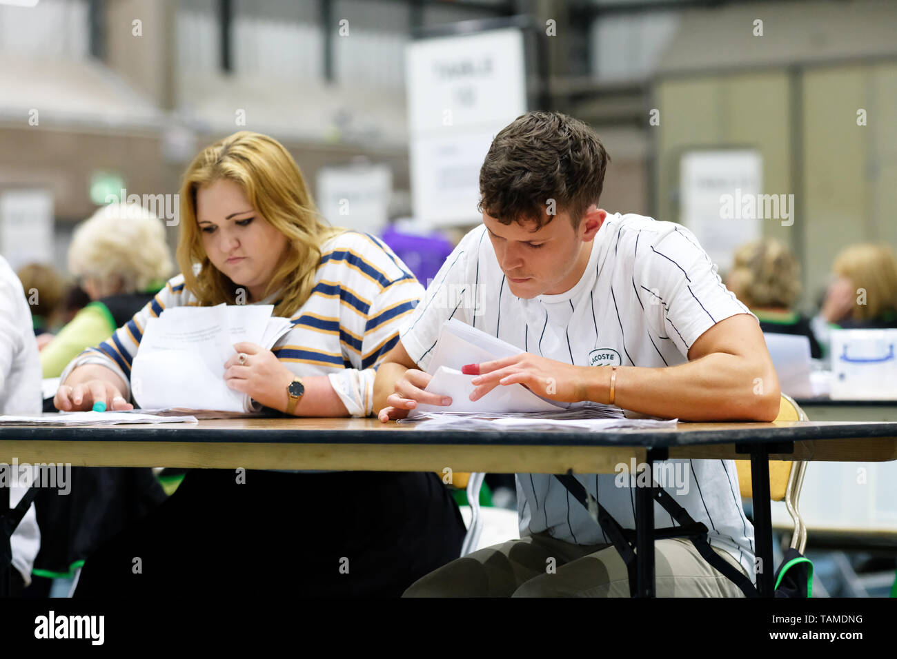 Hereford, UK. 26th May, 2019. Election staff count ballot papers in Hereford as part of the UK wide European Elections - The Hereford votes are part of the West Midlands region and will return 7 MEPs - overall the UK will return 73 MEPs to the European Parliament. Credit: Steven May/Alamy Live News - Stock Image