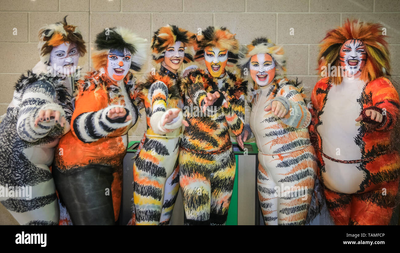 Cats Musical Costume Stock Photos \u0026 Cats Musical Costume