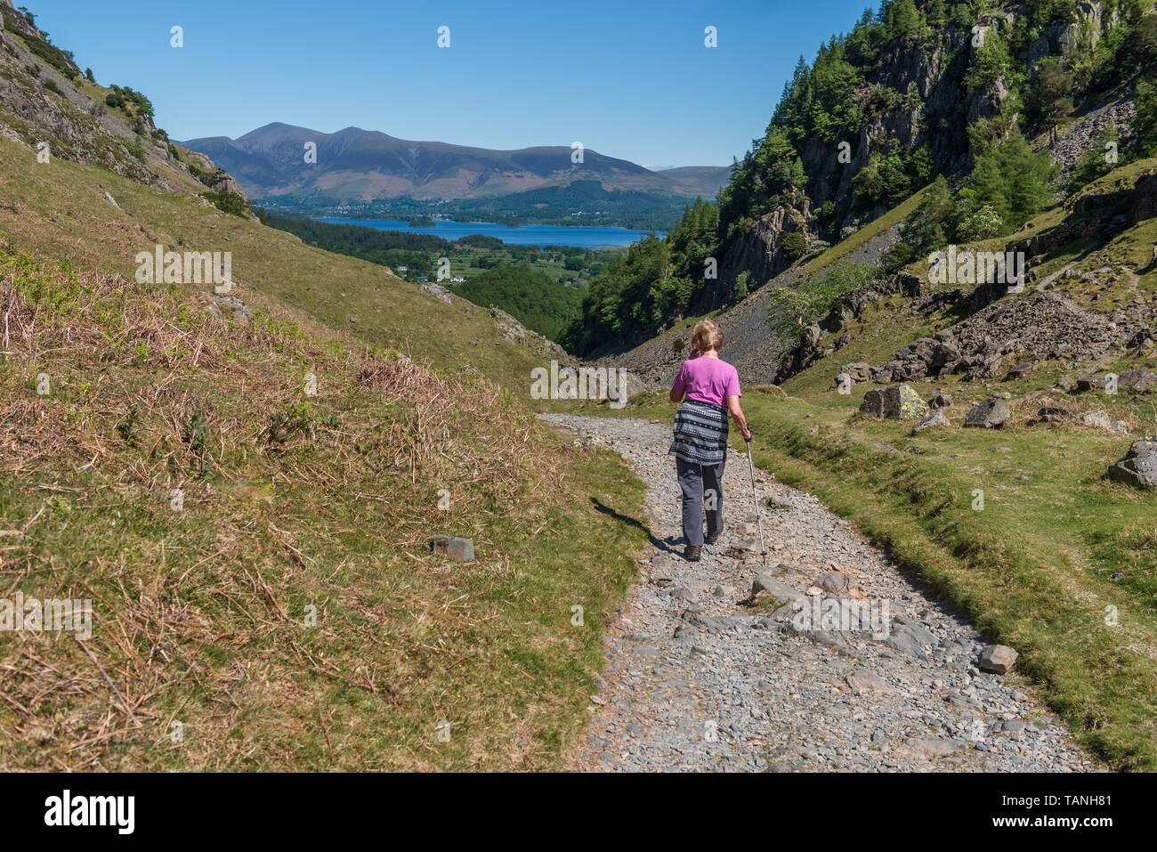 Walking the Allerdale Ramble at Castle Crag in Borrowdale - Stock Image