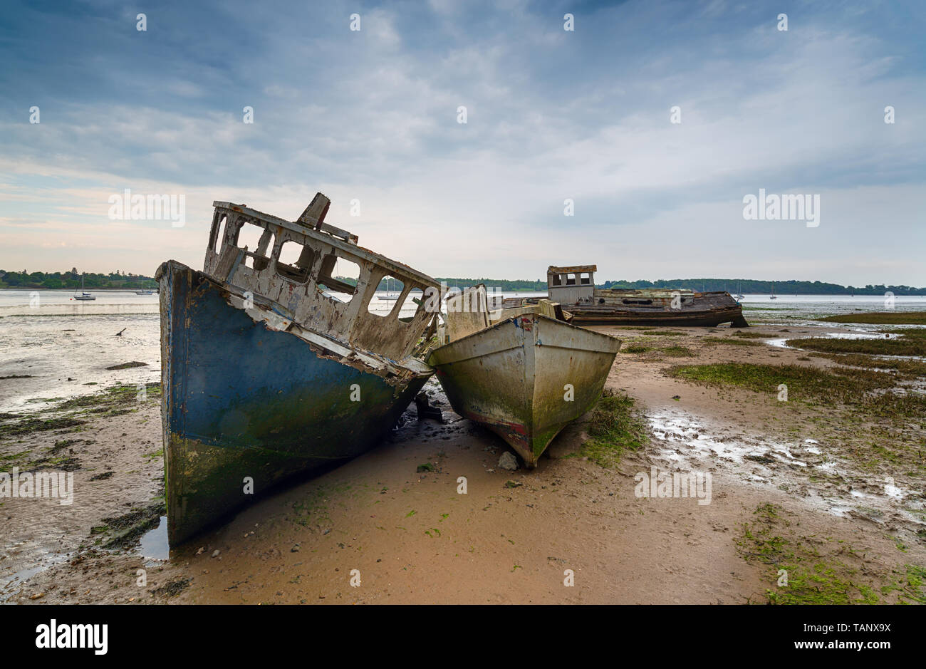 Old wrecked boats on the River Orwell at Pin Mill near Ipswich on the Suffolk coastline Stock Photo