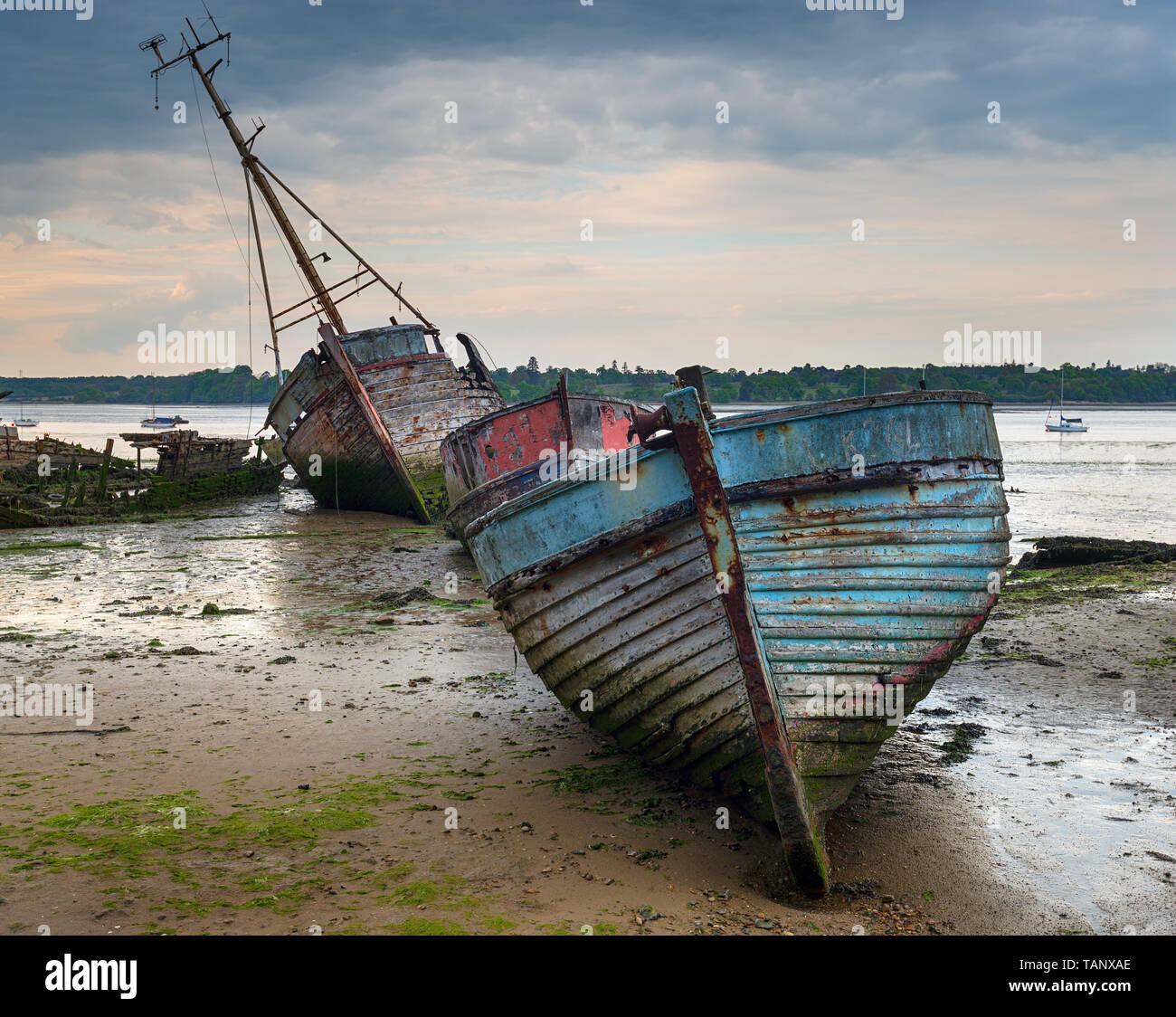 Old abandoned fishing boats at Pin Mill on the banks of the River Orwell on the Shotley peninsula near Ipswich on the Suffolk coastline Stock Photo