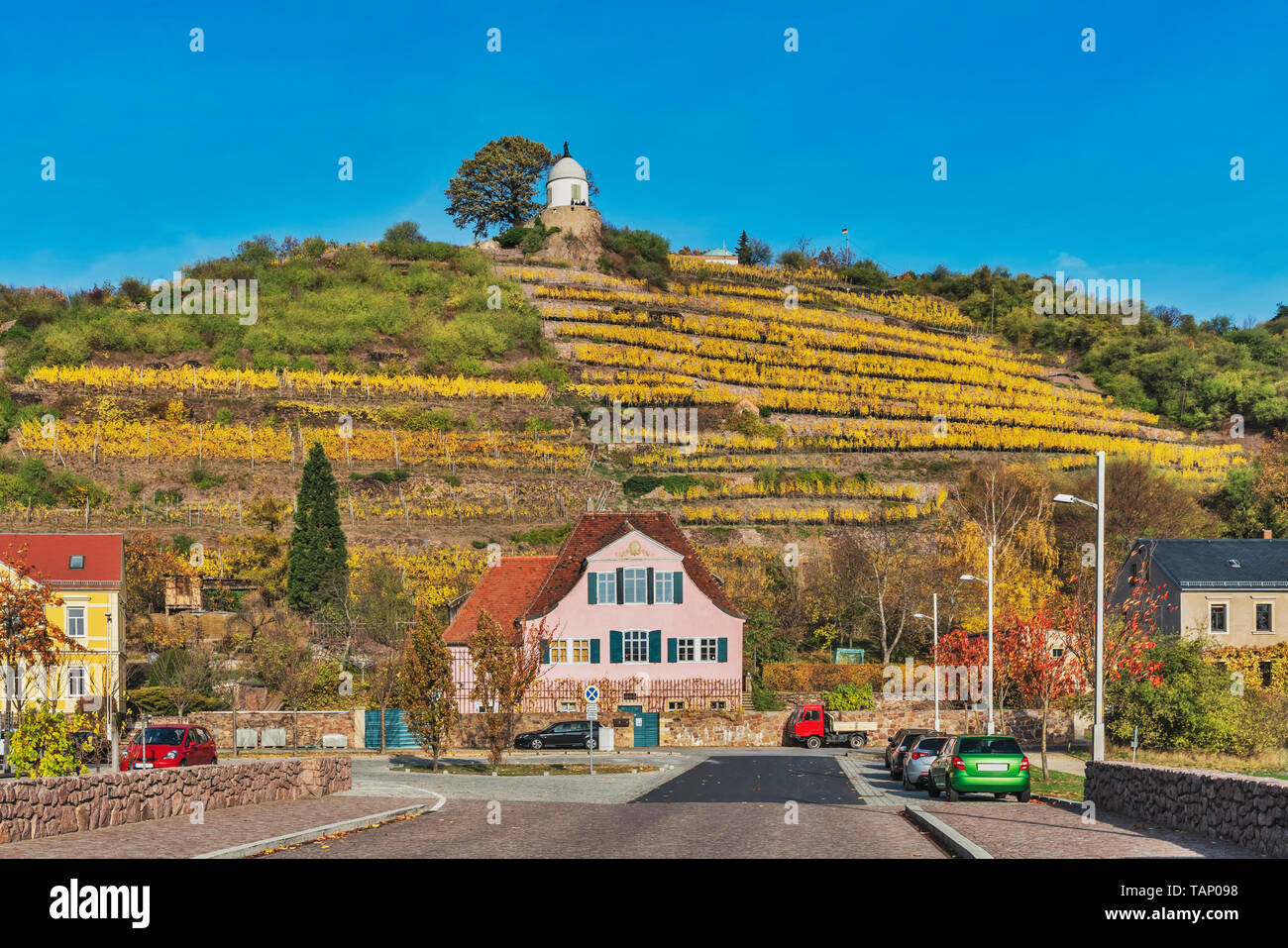 Haus Fliegenwedel is a listed, baroque winegrower's house below the vineyards of Radebeul. Above is the Jacobstein, Saxony, Germany, Europe Stock Photo