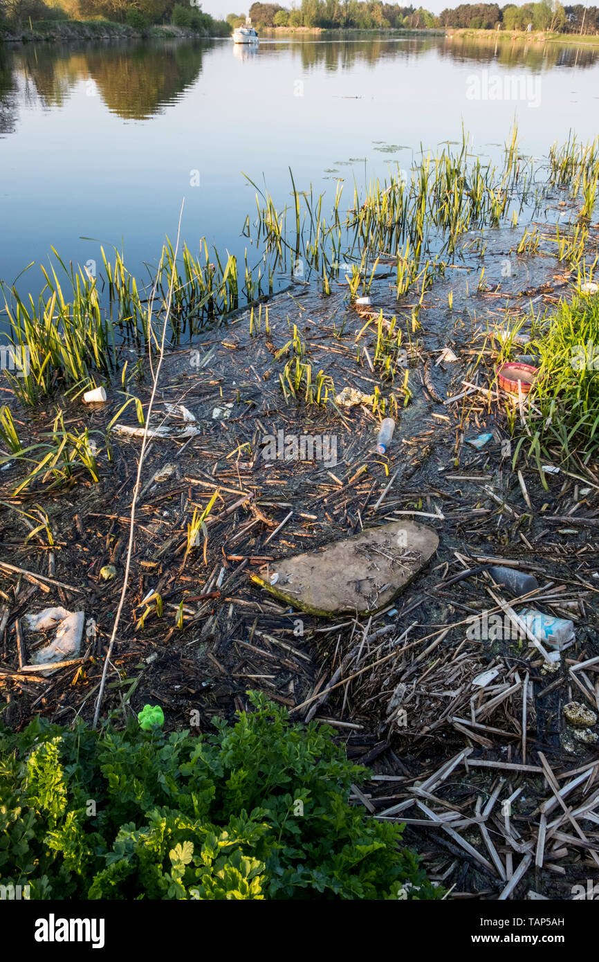 Polluted river. Plastic bottles and other rubbish in reeds and water by the banks of the River Trent, Nottinghamshire, England, UK - Stock Image