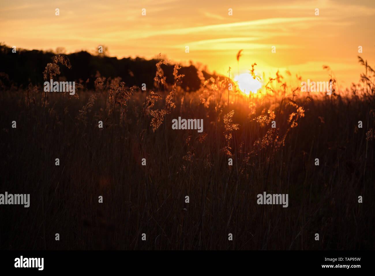 Beautiful Sunset Quotes Stock Photos & Beautiful Sunset
