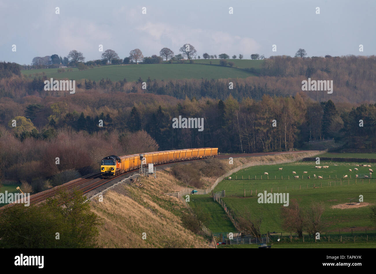 Colas Railfreight class 70 diesel locomotive passing Lazonby & Kirkoswald on the Settle to Carlisle railway with a freight train. - Stock Image