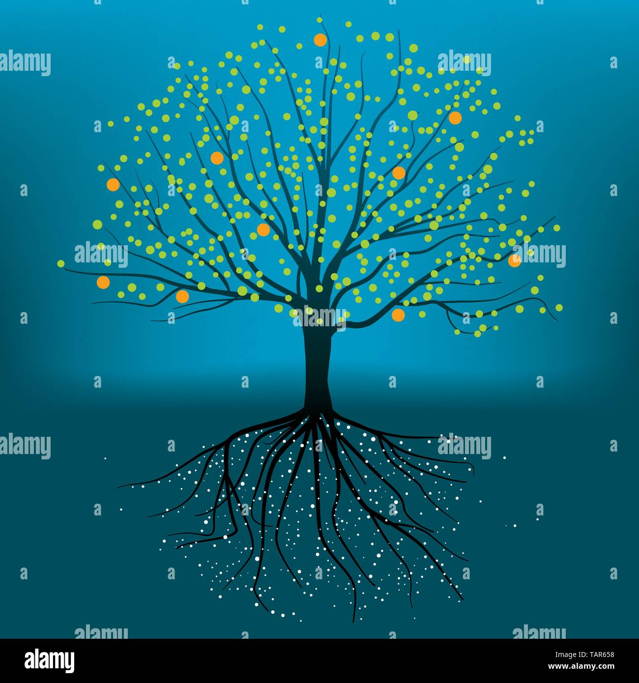 Complete vector illustration of tree with roots, branchs and leafs. - Stock Image