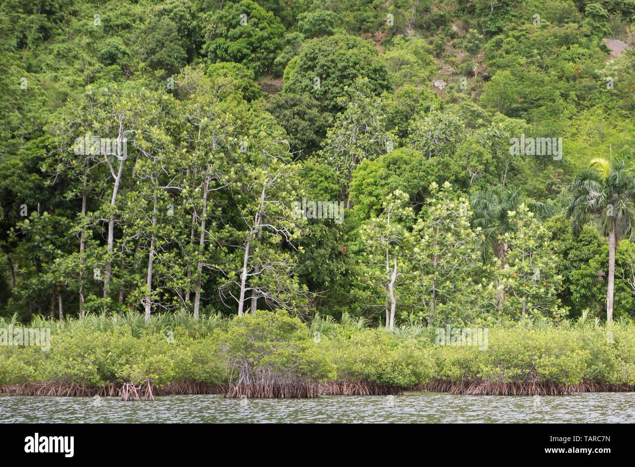 Haiti, hispaniola island, Haiti landscape - Stock Image