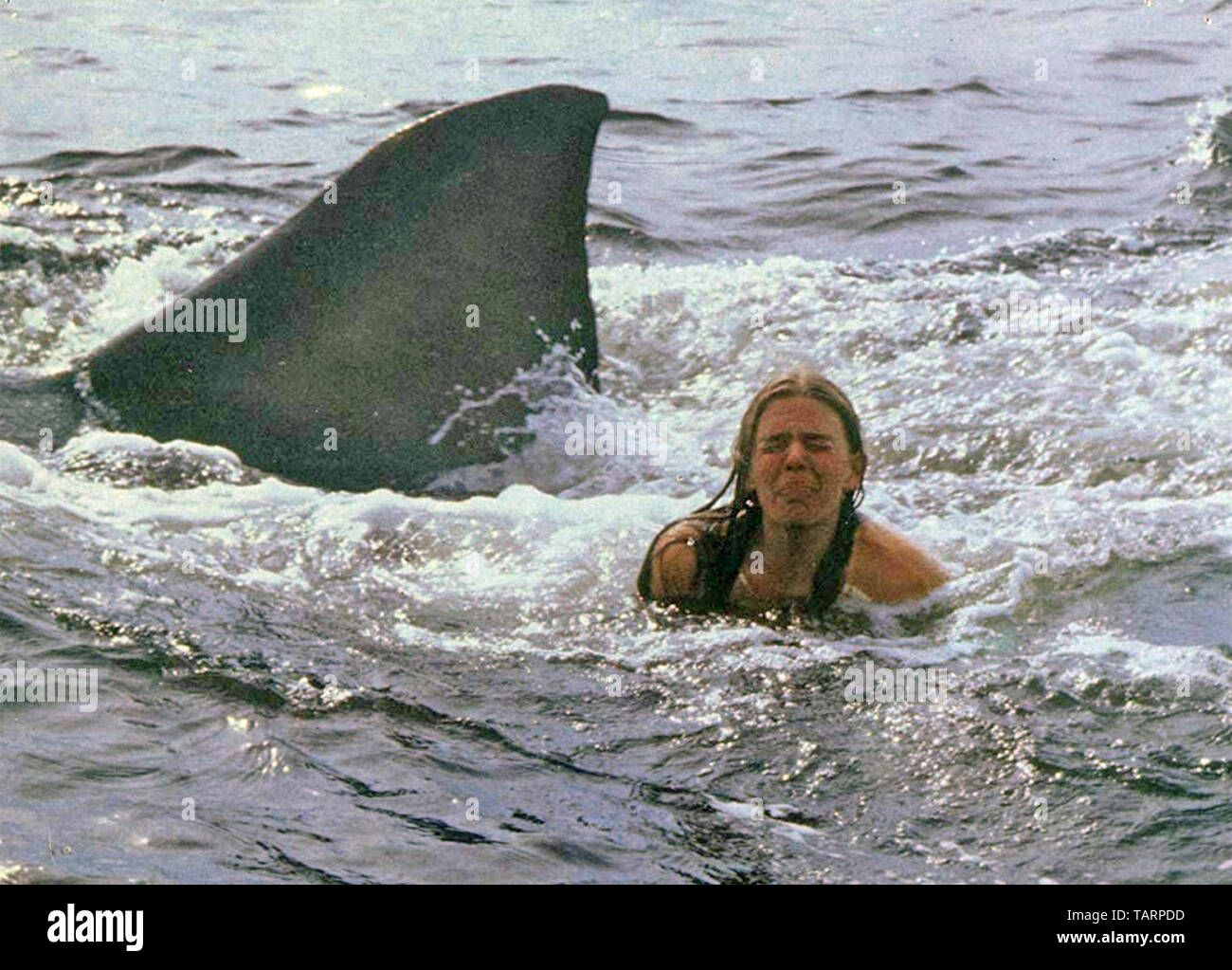 Jaws 2 1978 Universal Pictures Film With Cindy Grover Stock Photo Alamy