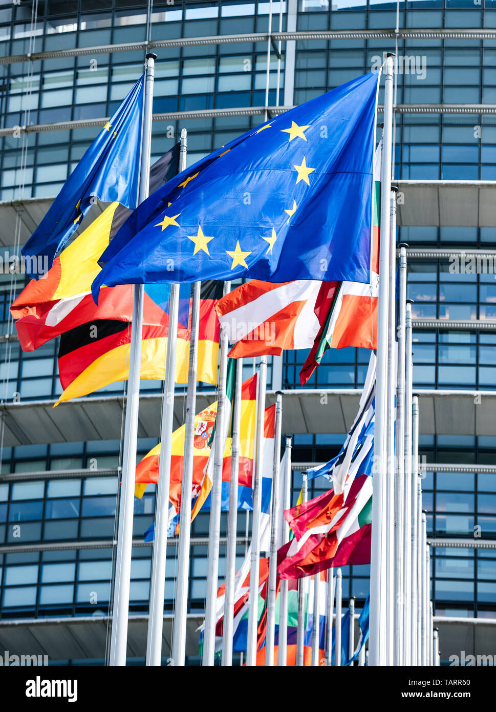 Clean flags of all member states of the European Union waving in calm wind in front of the Parliament headquarter on the day of 2019 European Parliament election. - Stock Image