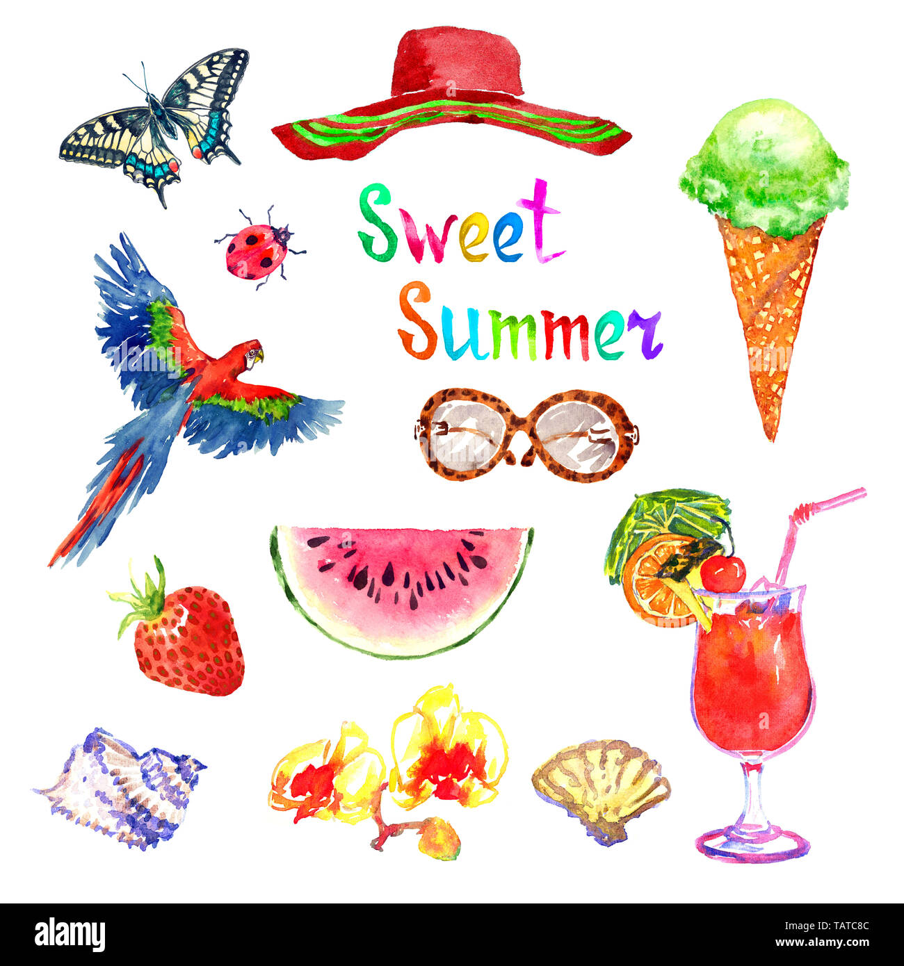 Sweet summer watercolor isolated illustration pink set, Papilio Machaon, hat, glasses, strawberry, ice cream, Scarlet macaw parrot, watermelon, shells - Stock Image