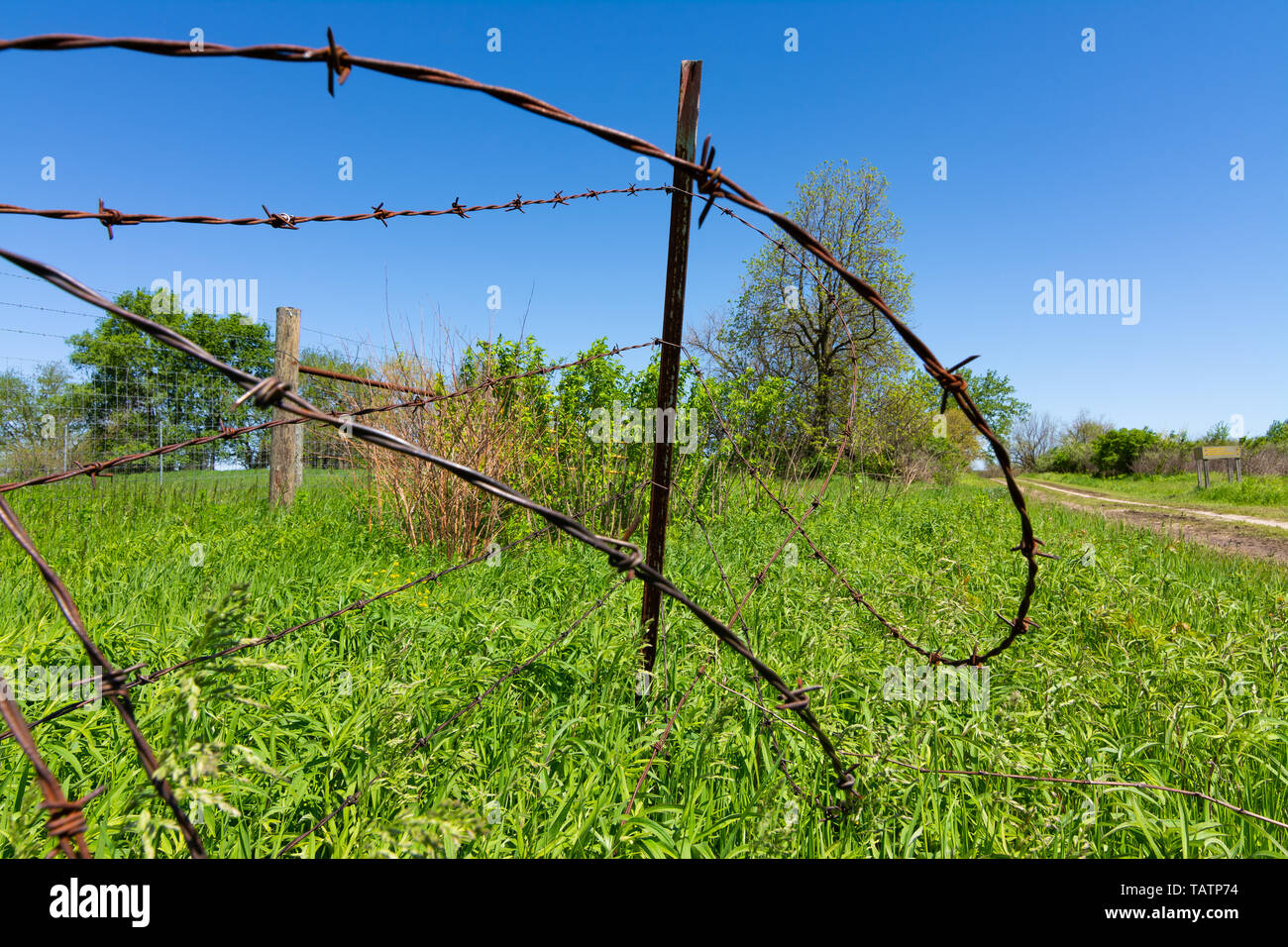 Rusted barbed wire fence with green field and blue skies in the background. - Stock Image